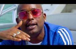 Mr. Blue - Mbwa Koko