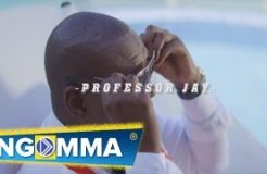 Professor Jay - Kibabe