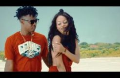 Chege feat.Nandy - Kelele Za Chura