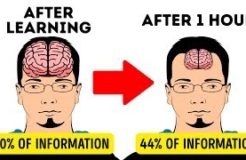 11 Secrets to Memorize Things Quicker Than Others