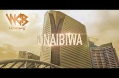 Rayvanny - Unaibiwa ( Official Video music )